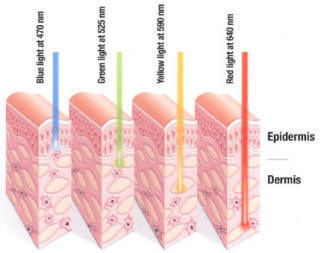 LED wave length for skin reproduction chart